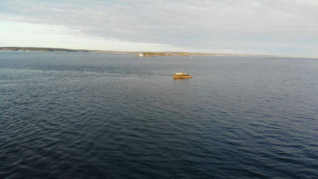 Rock ledge, Hunting Sea Ducks in Maine on Atlantic Ocean